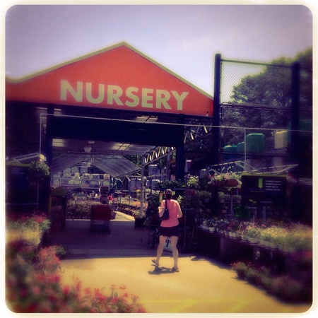 The Home Depot nursery in Georgia, USA