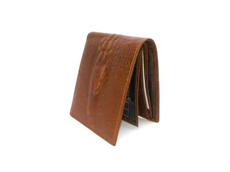 Brown Wallet crocodile skin on isolated