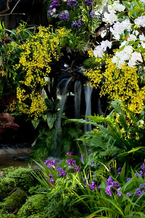 garish: Garden and Waterfall