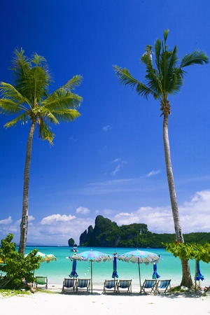 Phi Phi island, Thailand photo