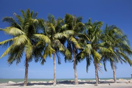 bounty: Bang Saen playa Foto de archivo