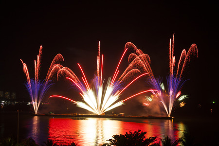 celebratory: Celebratory bright firework in a night sky