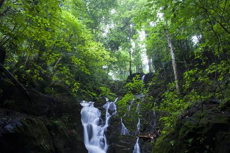 Ton Sai Waterfall,Ban Khao Phra Thaeo Wildlife,Phuket Thailand. Stock Photo - 60693617