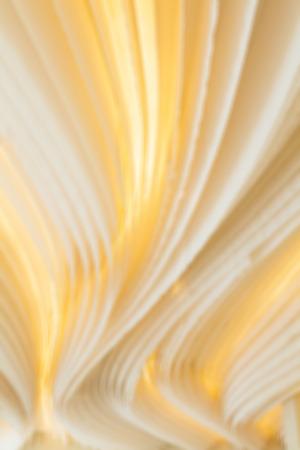 tela blanca: Fondo hermoso paño blanco, la luz en la tela de la raya. (Difuminar Fotos)