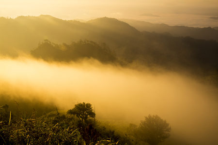 Trip to the highest Mountain of Pai - Mountain view with foggy environment during sunrise in the morning in Doi Thong viewpoint  Pai Mae Hong Son Province of Thailand
