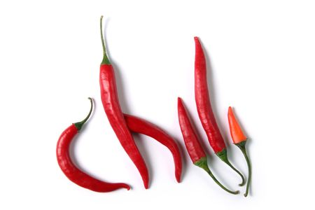 red hot chili on white background photo