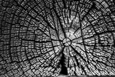 elaboration: old beam texture in monochrome