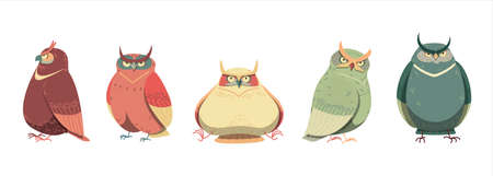 vector illustration of cute owls isolated on white background