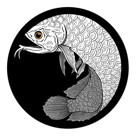 vector illustration of Arowana fish isolated on white background
