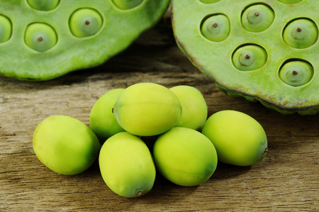 lotus seeds: green lotus seeds