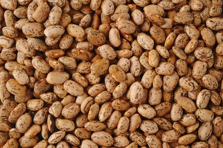 Pinto beans photo