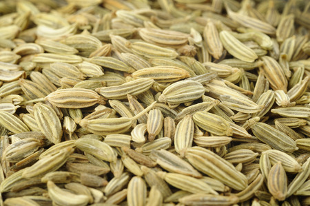 fennel seeds: fennel seeds background Stock Photo