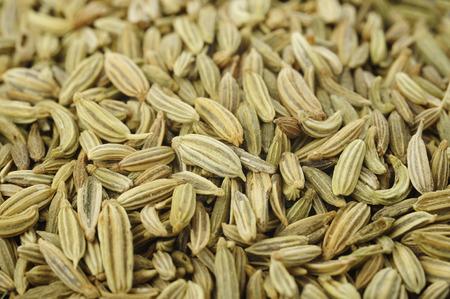 erva doce: sementes de funcho fundo