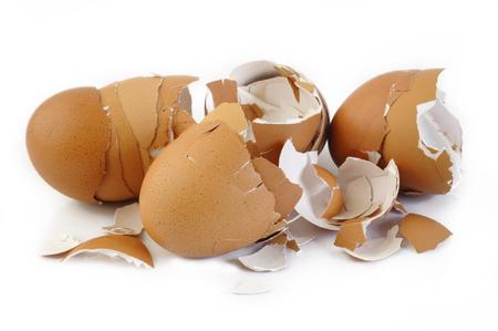 eggshell: eggshell on white background