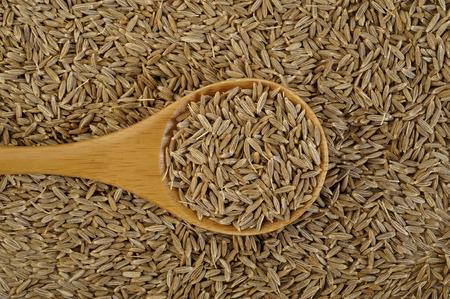 cumin: cumin seeds in wooden spoon