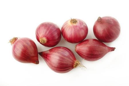 shallot onion isolated on white background