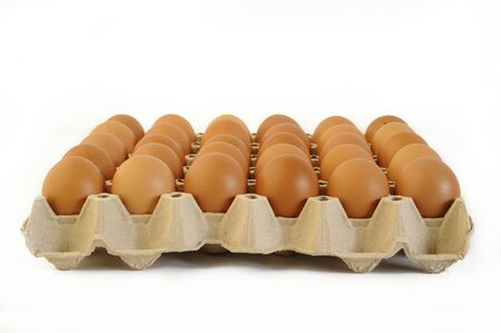 chicken eggs  in cardboard egg crate