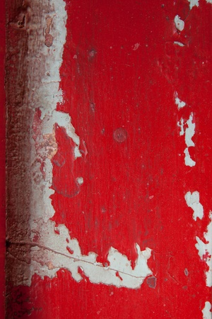 Aged Peeling Paint Background or texture full frame close up   photo