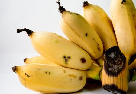banana of thailand photo