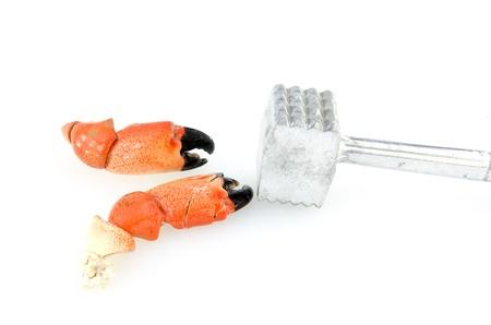 tenailles: Pinces crabe d'isolement Banque d'images