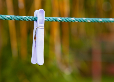 clothes pegs: THE clothes pegs sit on a washing line Stock Photo