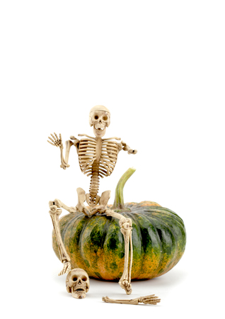 skeleton with a pumpkin on a white background