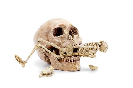 skull biting a skeleton on white backgroud