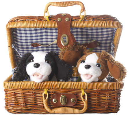 snugly: plush dogs in a basket on a white