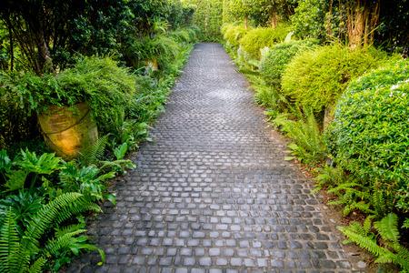 Cobble stone walkway in a beautiful tropical garden Banco de Imagens