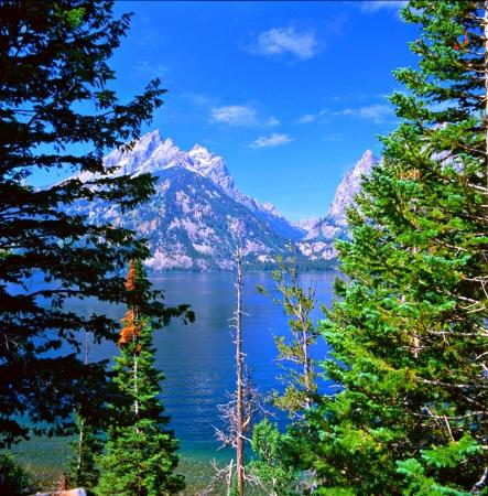 overlook: Jenny Lake Overlook   Grand Teton National Park,WY Stock Photo