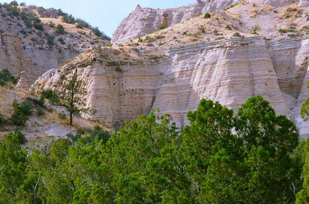 evergreens: Scenic vista on volcanic formed rock faces with thick evergreens below, at Kasha-Katuwe Tent Rocks National Monument - north central New Mexico.
