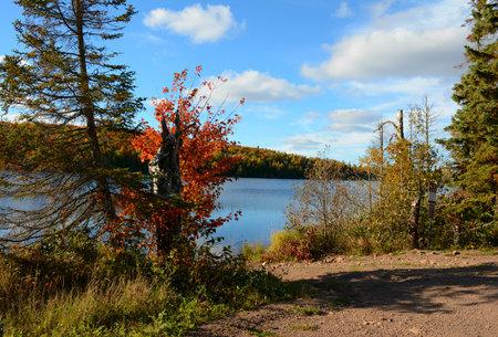 lakeshore: Picturesque autumn lakeshore scenery in Minnesota. Stock Photo
