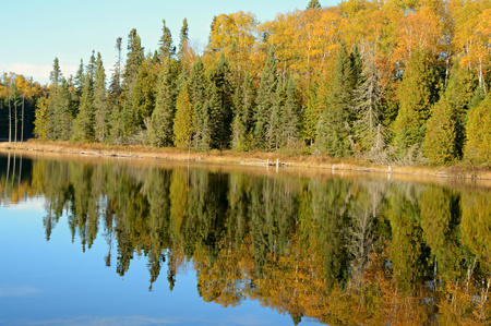placid: Bright tree colors reflected on a placid Minnesota lake. Stock Photo
