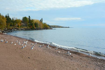 morn: Autumn morn along the north shore of Lake Superior.