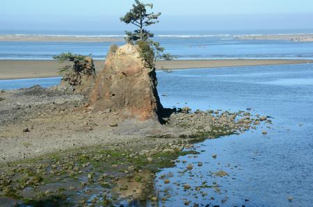 Scenic central coastline vist at Lincoln City, Oregon.