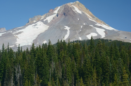 Summer view on east flank of Mount Hood - Oregon.