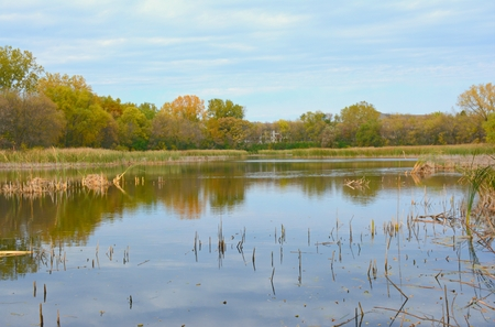 Scenic autumn overlook on a placid freshwater pond. Stock Photo