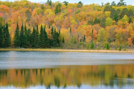 Autumn colors on lake in Itasca State Park, Minnesota. Stock Photo