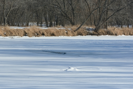 Frozen Rum River and upland wooded riverbank - MN.