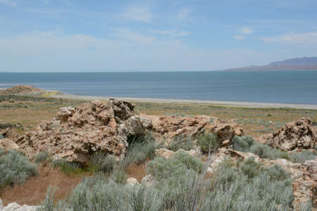 Panoramic spring vista on Antelope Island State Park in north central Utah, with the Great Salt Lake in background.