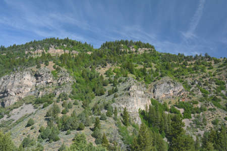 Colorful spring vista along the Logan Canyon National Scenic Byway in northern Utah. Standard-Bild