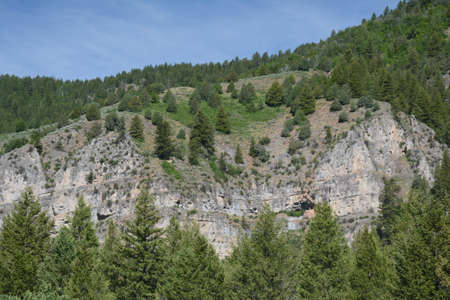 Picturesque spring perspective along the Logan Canyon National Scenic Byway in northern Utah.