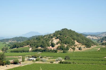 wine road: View of Napa Valley wine district Stock Photo