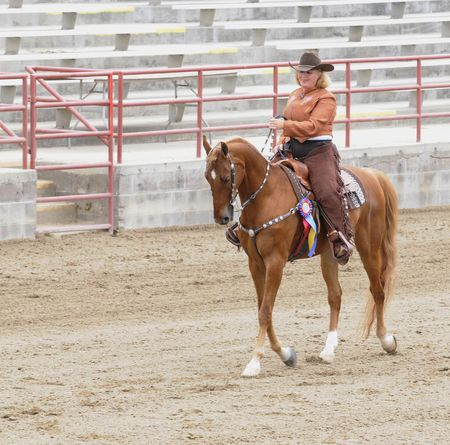 livery: Woman riding Saddlebred horse in western livery winner of championship
