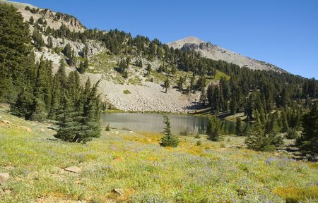 treed: a tree lined Mountain lake in Lassen National Park Stock Photo