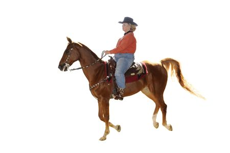 livery: Woman riding Saddlebred horse in western livery