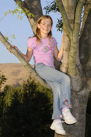 Young girl sitting in a tree at sunset