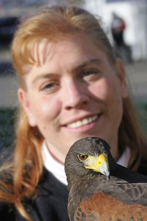 handler: Harris hawk with handler