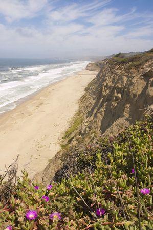 ブルームのカラフルなアイスと捨てられた北カリフォルニアの海岸線とだけ fogbank オフ、coastling