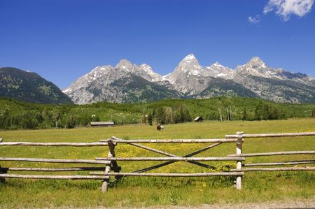 a pastoral scene on a ranch at the base of the Tetons photo